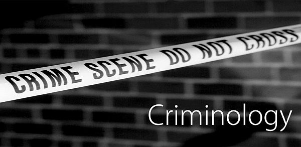 Top Criminology Schools to Study in the USA