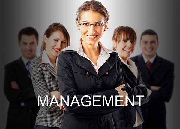 Top Universities for Master's in Management in the World