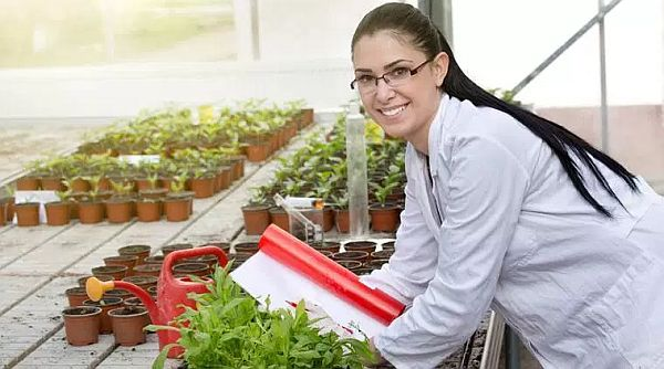 World's Best Universities to Study in Agricultural Sciences