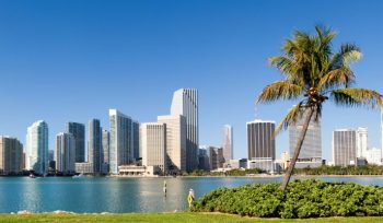 Top Business Schools to Study in Florida