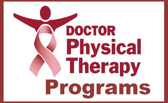 Top Doctor of Physical Therapy Programs