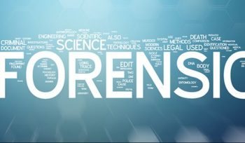 Best Colleges for Forensics