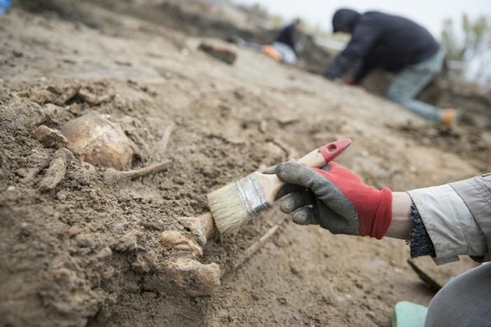 Best Colleges for Archeology