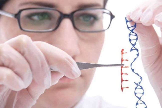 Best Colleges for Genetic Engineering