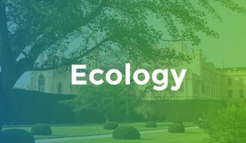 Best Colleges for Ecology