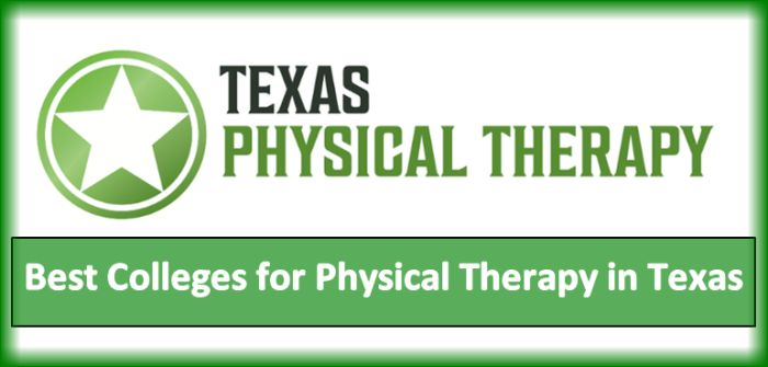 Best Colleges For Physical Therapy >> Best Colleges For Physical Therapy In Texas 2020 Helptostudy Com 2021