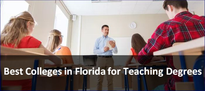 Best Degrees 2020.Best Colleges In Florida For Teaching Degrees 2020