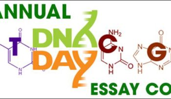 Dna essay contest 2011