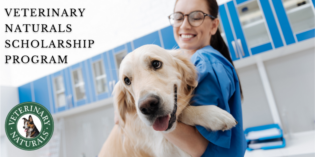 Veterinary Naturals Scholarship Program - 2020 HelpToStudy ...